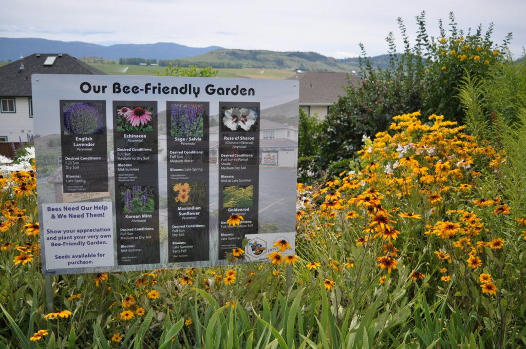 planet bee honey farm customer education on bee-friendly gardens