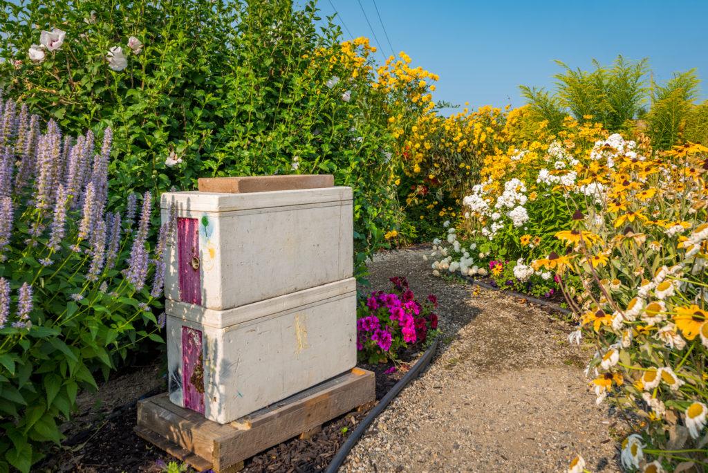 planet bee honey farm honeybee boxes vernon british columbia canada